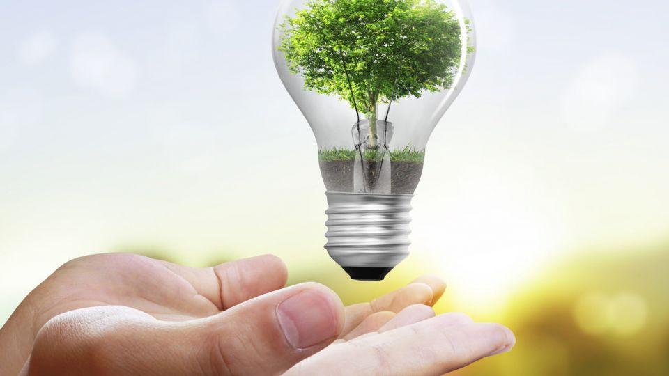 Green-Saving-e1517910546324.jpg