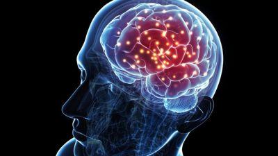 brain_activity-5798eebf5f9b589aa9ae69b2.jpg
