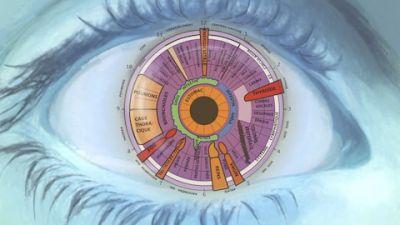 iridology-graphic.jpg