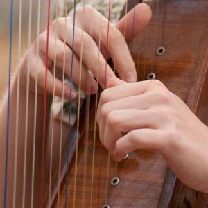 mm_ti_harp_car3.jpg